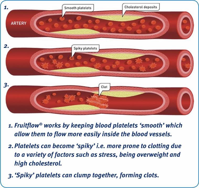 Fruitflow Artery